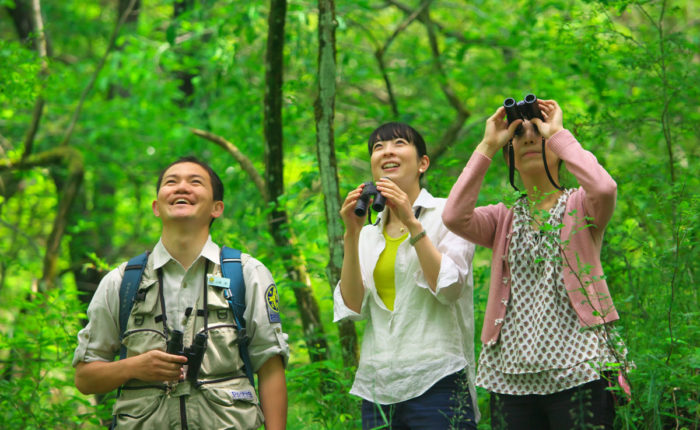 Bird watching tours in sri lanka